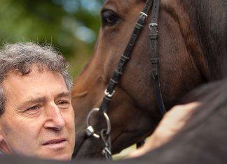 Ulrich Schmelzer ist Pferdesachverständiger.