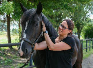 Fit auf dem Pferd_Warm-up für Reiter_Tanja Witte