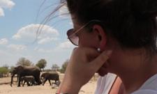 Frühstück mit Elefanten – Forschung und Fernstudium in Simbabwe